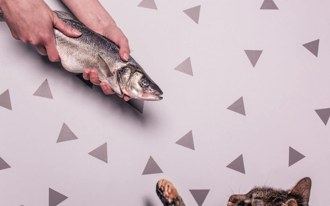 Bedeutung der Motive für die Kundenorientierung