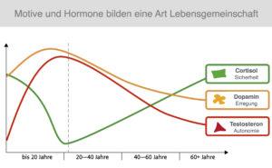 Motive und Hormone bilden eine Lebensgemeinschaft